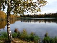 Highlight for album: Taku Lake
